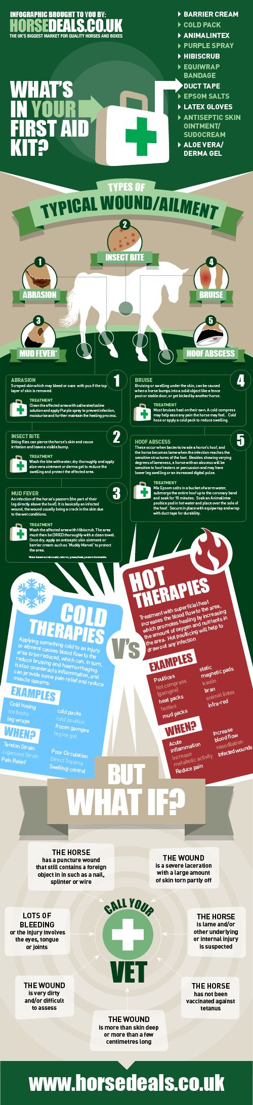 First aid infographic for common ailments and wounds. www.horsedeals.co.uk