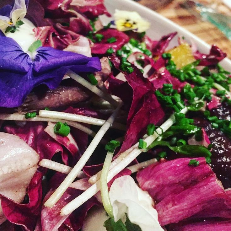 Duck and radicchio - the best winter to spring dish - pretty and textured #salad #duck