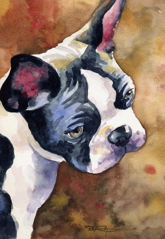 BOSTON TERRIER Dog Art Print Signed by Artist DJ Rogers