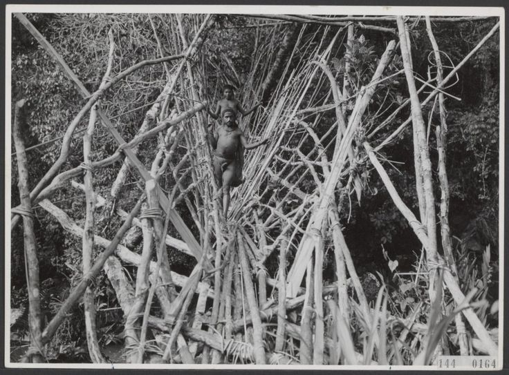 Expeditie Sterrengebergte-Julianatop Nieuw-Guinea (1959)