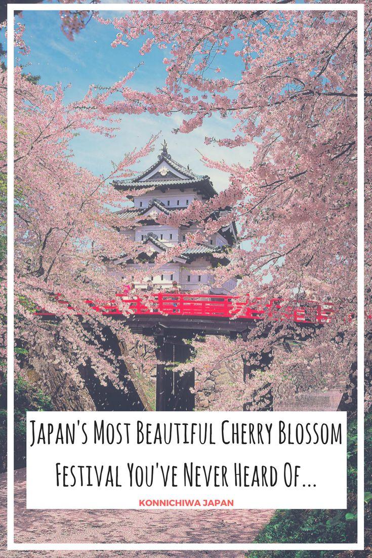 Japan's Most Beautiful Cherry Blossom Festival You've Never Heard Of #japan #cherryblossom #cherryblossoms #cherryblossomfestival