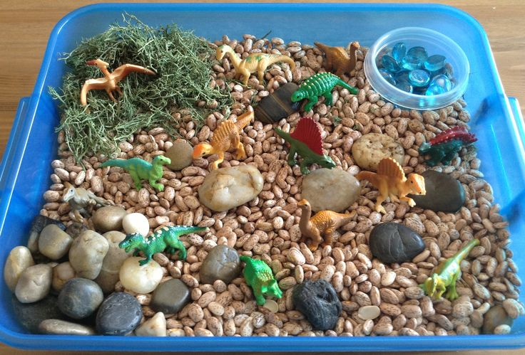 Our Dinosaur Sensory Bin - It contains pinto beans, safari dinos toob, reindeer moss, blue gems and stones - Preschool Activity