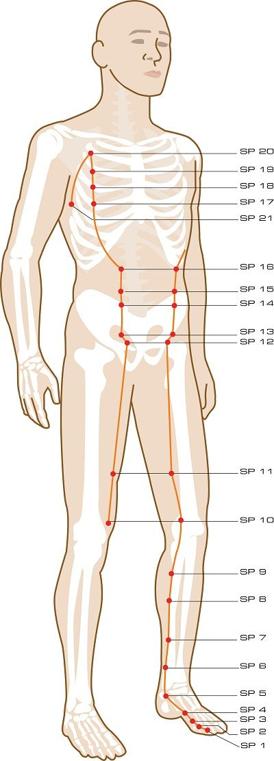 Spleen Acupuncture Points