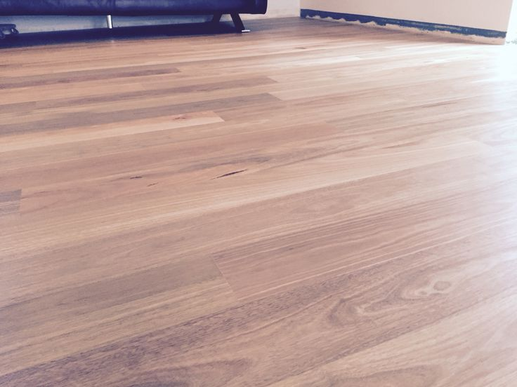 Spotted Gum Brushed Matt finish floating floor system. Supplied & installed by www.mytimber.com.au