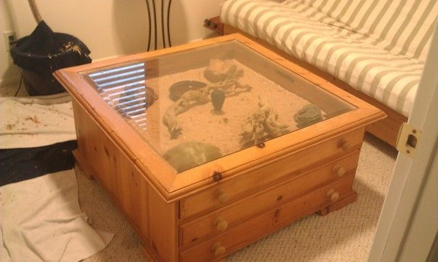 Coffee Table Terrarium Leopard Gecko 39 S For Sale In Springville Leopard Geckos Pinterest