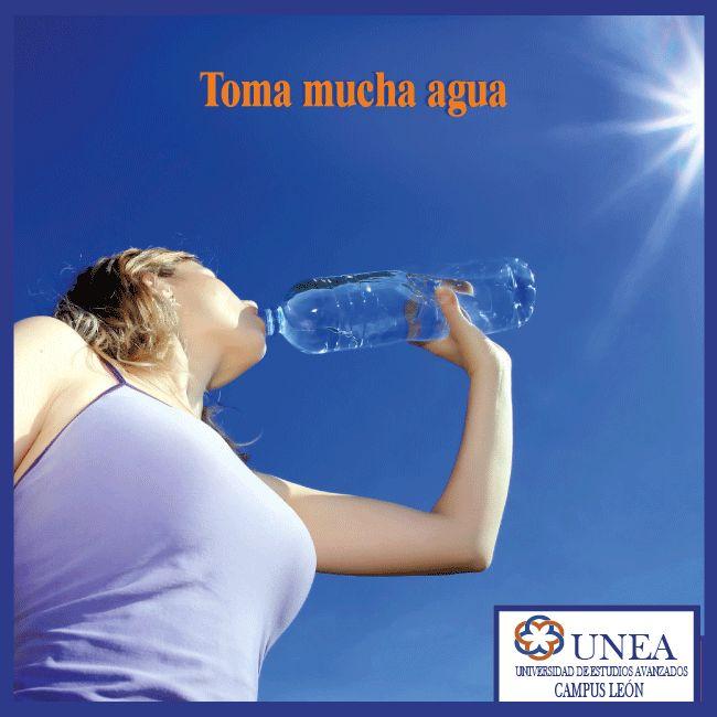 De 6 a 8 vasos al día son esenciales para mantenerte hidratado, el agua además te ayuda a tener una buena digestión, mantener la temperatura adecuada de nuestro cuerpo y eliminar sustancias que no necesitamos por medio del sudor y la orina. Recuerda que la mayor parte de los nutrimientos que obtenemos de los alimentos pueden ser usados por el cuerpo humano gracias al agua.  #TipsQueAyudan. UNEA - Campus León