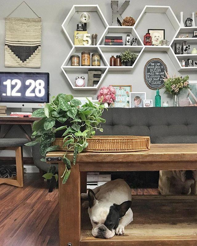 Homes Goods Furniture: 25+ Best Ideas About Honeycomb Shelves On Pinterest
