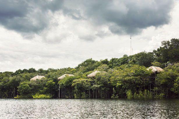 Journey to Juma Lodge   - Amazonia