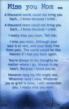 It is hard to believe it has been 6 years since you have been gone.  Not a day goes by that I don't think of you.  I wish you were still here.  Love you mom! <3