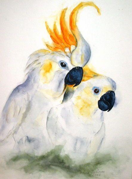 Watercolour 'Gelbhaubenkakadu' von Maria Inhoven bei artflakes.com als Poster oder Kunstdruck $18.03