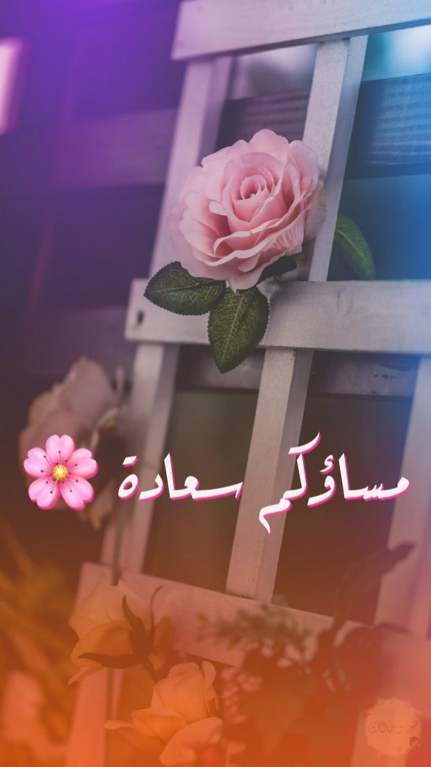 مساؤكم سعاده Evening Greetings Learn Islam Evening Quotes