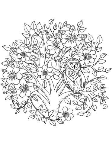 Búho y árbol floreciente Dibujo para colorear