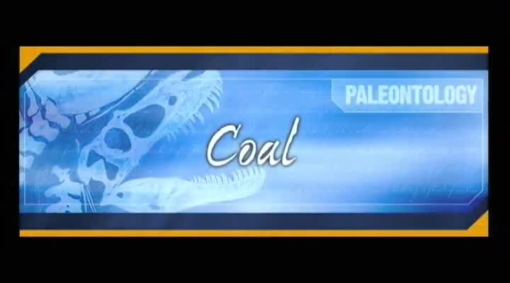 A Video on how Coal was made from a Biblical view. - Use with The Rag Coat