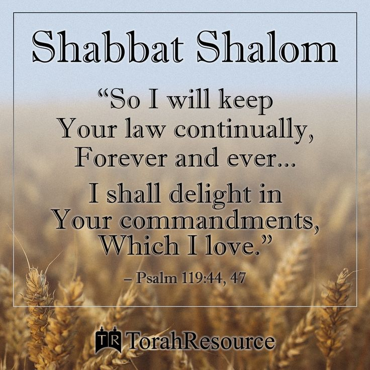 Shabbat Shalom! ~ So I may always keep Your Torah , forever and ever, I delight in Your mitzvot , which I love. Psalms 119:44‭, ‬47