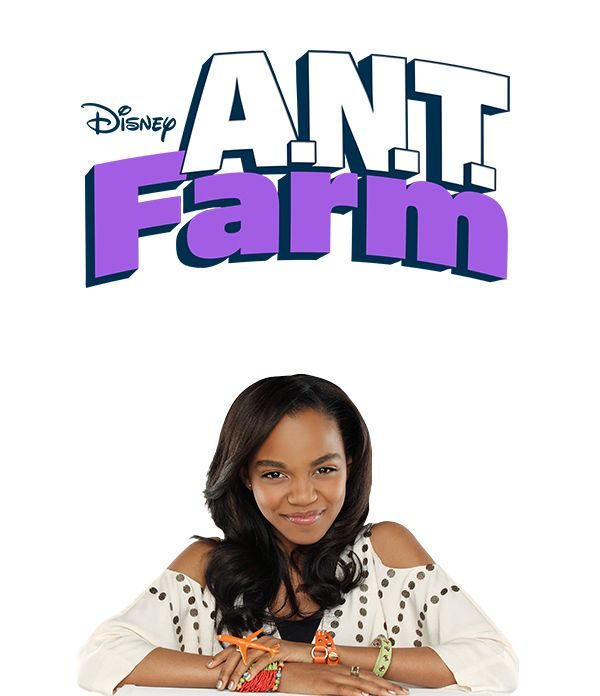 ANT  FARM PICTURES TONPRINT | ant-farm