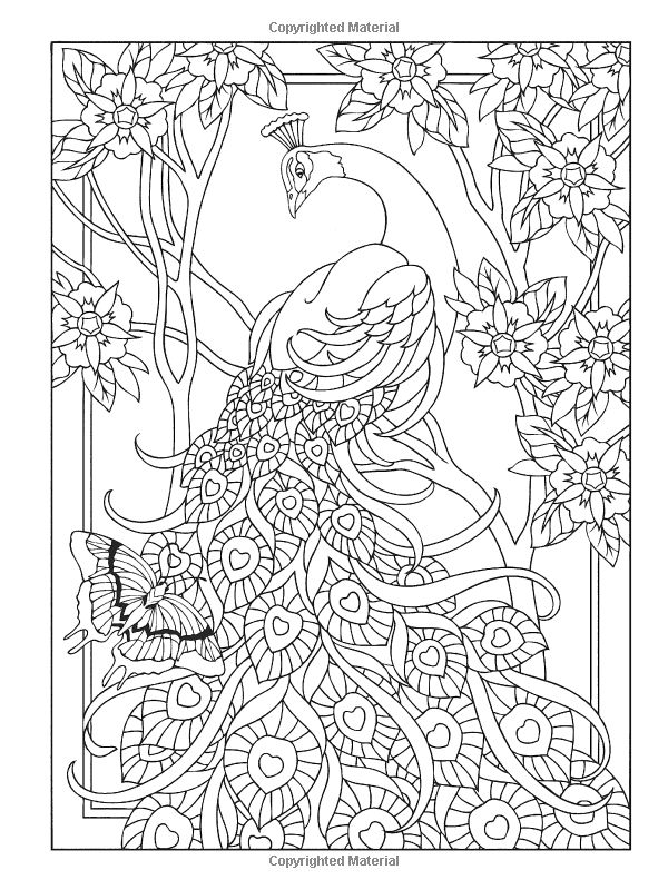 Creative Haven Peacock Designs Coloring Book Artwork by