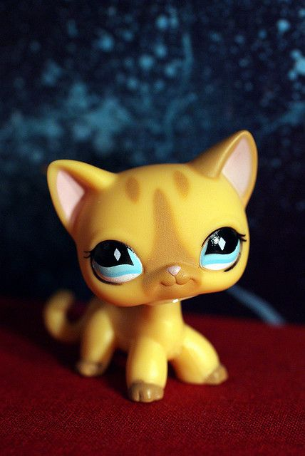 Littlest Pet Shop cat I want it