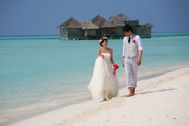 17 best maldives weddings images on pinterest maldives