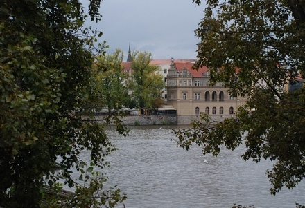 View from my hotel room in Prague where I conducted a 3 day workshop on Japanese Acupuncture and Meridian Therapy in October 2010.  #japaneseacupuncture #meridiantherapy #worldacupuncture