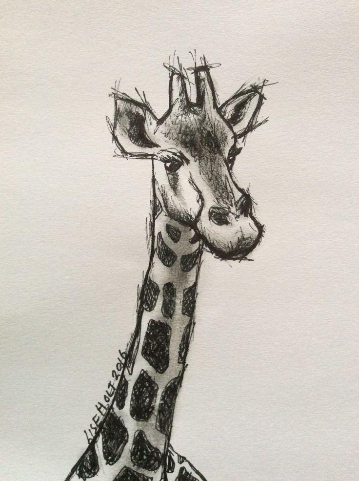 """Giraffe"" sketch on paper by Lise Holt"