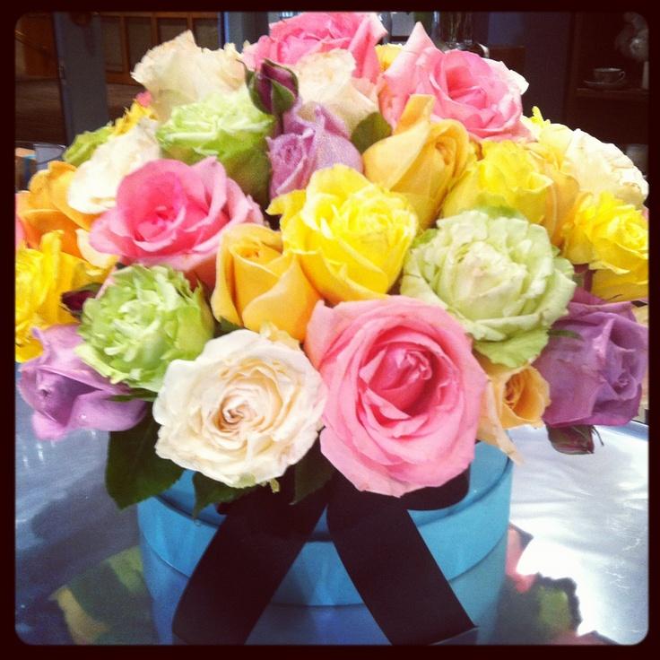Sydney field roses