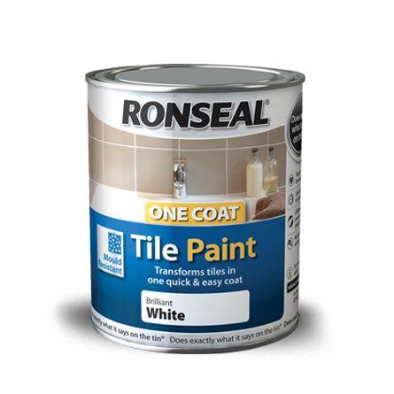 B And Q Mould Resistant Paint