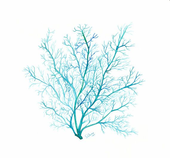 Blue Coral Sea Fan - Original watercolor painting -  9 x 9 inches square painting