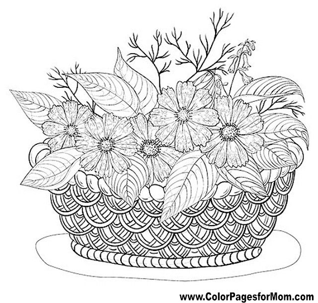 Flower Coloring Page 54