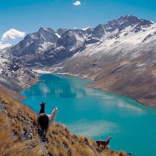 CONDORIRI - LA PAZ BOLIVIA El Nevado Condoriri es una montaña en la Cordillera Real de Bolivia de unos 5.648 metros de altitud. Es también el nombre de todo el macizo Condoriri está situado en el Departamento de La Paz, Provincia de Los Andes, municipio de Pucarani, al sudeste del Chachacomani y noroeste del Huayna Potosí.