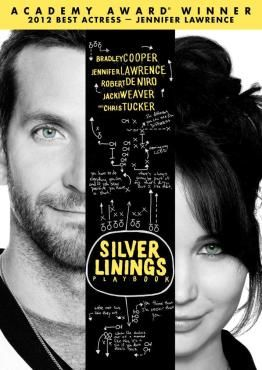 Silver Linings Playbook. Surprisingly enjoyable. The characters grow on you and come to terms with themselves in a believable way.