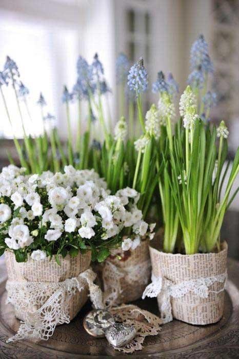 Bulbi In Vaso Di Vetro.Metti I Bulbi In Casa Un Giardino In Diretta