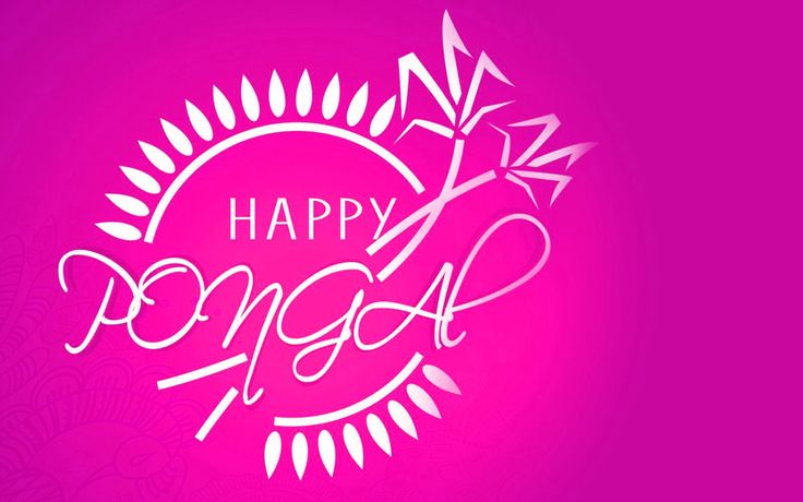 Tamil festivals list.Pongal is harvest festival of tamil Get Pongal tamil greetings Happy pongal Images, pongal quotes, pongal fb covers pongal vazhthukkal