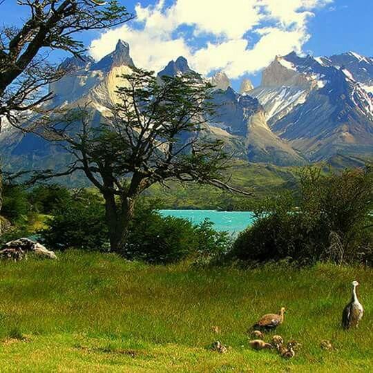 Lago Pehoe. Torres del Paine. Chile
