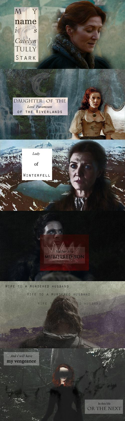 My name is Catelyn Tully Stark. Daughter of the Lord Paramount of the Riverlands. Lady of Winterfell. Mother of a murdered son. Wife to a murdered husband. And I will have my vengeance in this life or the next. #got #asoiaf