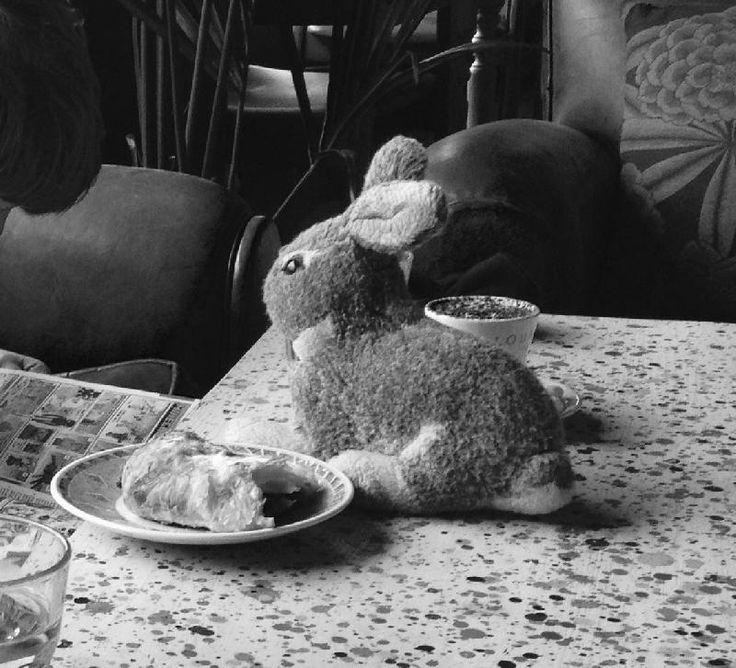 Lost on 12/02/2015 @ Chippenham, Wiltshire. Grey rabbit lost in Chippenham town centre. Much loved, much missed. Visit: https://whiteboomerang.com/lostteddy/msg/skgb1u (Posted by Isabel on 16/02/2015)