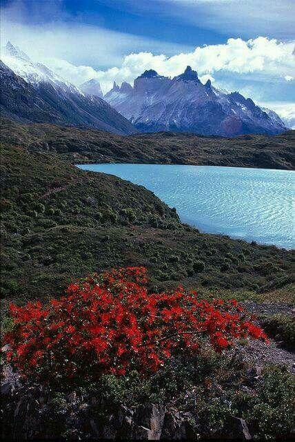 Lago Grey. Región de Magallanes.