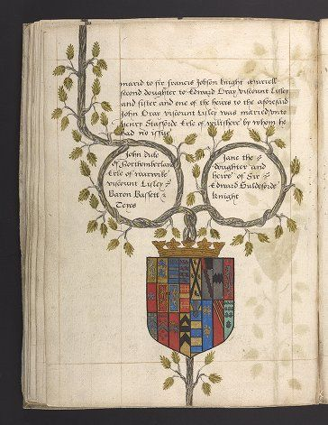 Silly straw of a family tree. Genealogical table prepared for Robert Dudley, Earl of Leicester, showing the marriage of his parents, the Duke and Duchess of Northumberland. Robert's brothers and sisters are listed on subsequent pages in the manuscript.