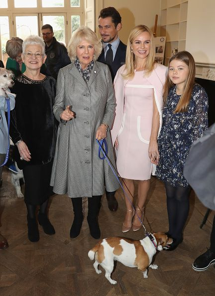 Camilla Duchess Of Cornwall with her dog Beth and Jacqueline Wilson David Gandy Amanda Holden and her daughter Alexa Hughes during her visit to...