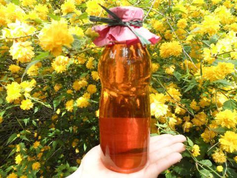 cseresznyevirág2_480x360.jpg
