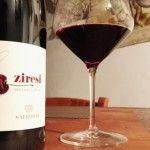 Marzemino Superiore dei Ziresi Salizzoni  #marzemino #vino #trentino #salizzoni #vinotube #tasting