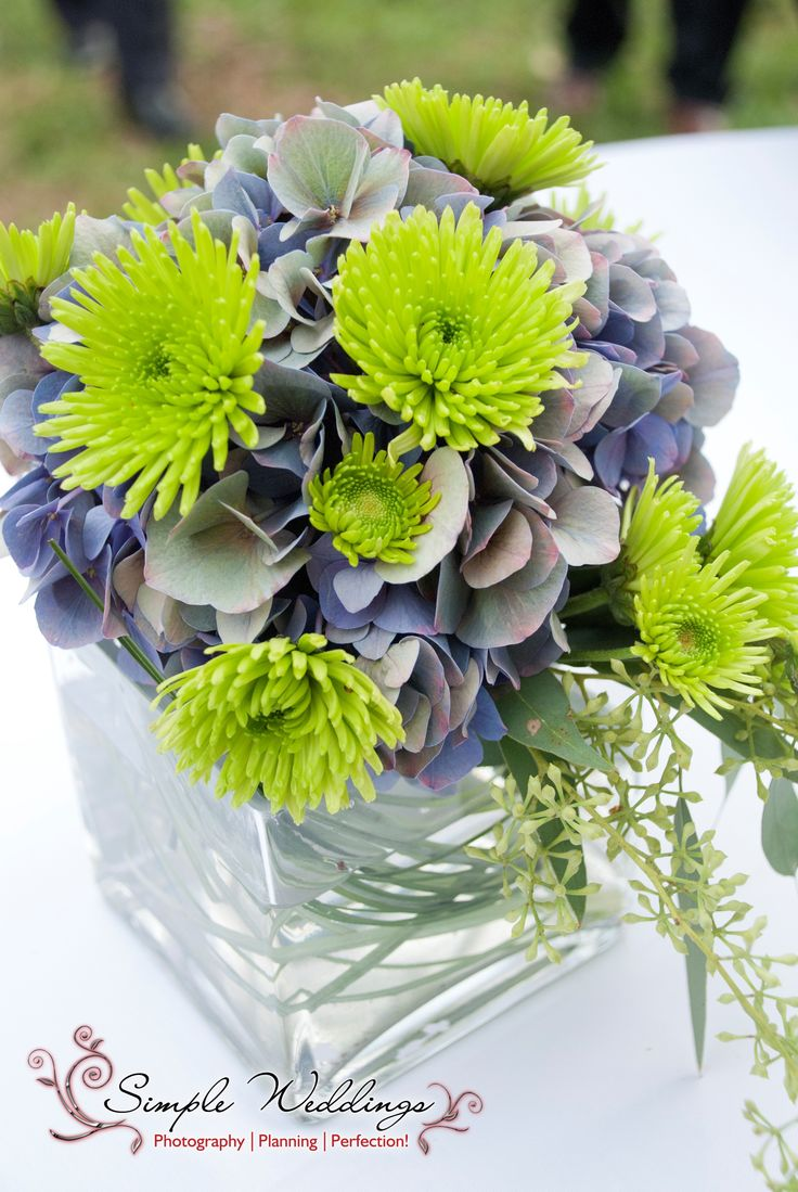 1000 Images About Square Vases On Pinterest Glass Vase Flower And Centerpieces