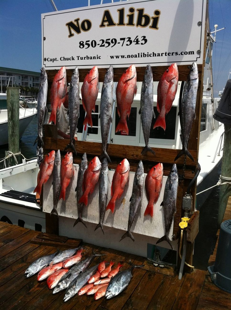 22 best images about the catch fifth amendment deep sea for Destin fishing guides