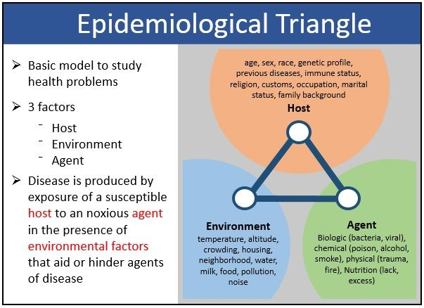 This Epidemiological Triangle Highlights The Key Characteristics