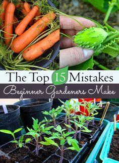 Top 15 Mistakes Beginning Gardeners Make