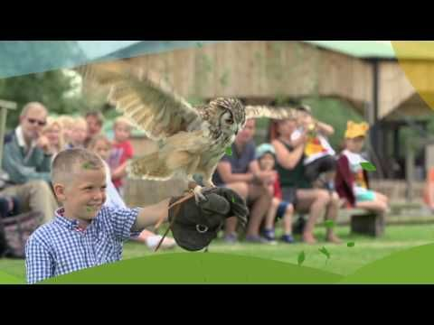 Puxton Park, Somerset's newest visitor attraction, lots to do and lots to see for the whole family