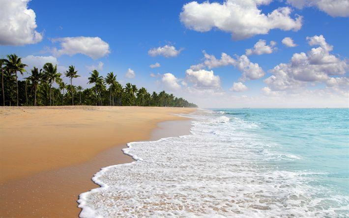 Hämta bilder Ocean, beach, tropikerna, vågor, sommar, sommarlov, tropiska öar, palmer