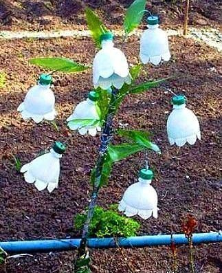 Recycled plastic bottles into garden art