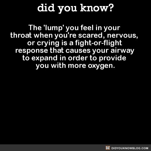 The 'lump' you feel in your throat when you're scared, nervous, or crying is a fight-or-flight response that causes your airway to expand in order to provide you with more oxygen.  Source