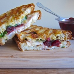 Turkey and Cranberry Panini  Sandwiches by TheFoodiePhysician. Pretty good. Add a layer of bacon or panchetta next time for a little more flavor.
