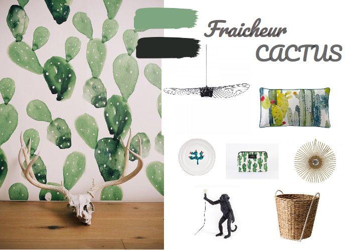 Fraicheur cactus